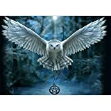 DIY 5D Diamond Painting, Crystal Rhinestone Diamond Embroidery Paintings Pictures Arts Craft for Home Wall Decor Flying White Owl 11.8 X 15.7 Inch
