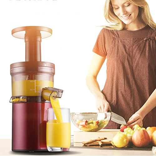 Juicer Juicer Home Automatic Fruit and Vegetable Multi-function Mini Student Fried Fruit Juicer Multifunctional (Size: 24*11*36cm)