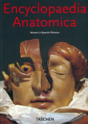 Encyclopaedia anatomica. Collection complète des cires anatomiques