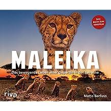 Maleika: Das bewegende Leben einer Gepardin in der Savanne