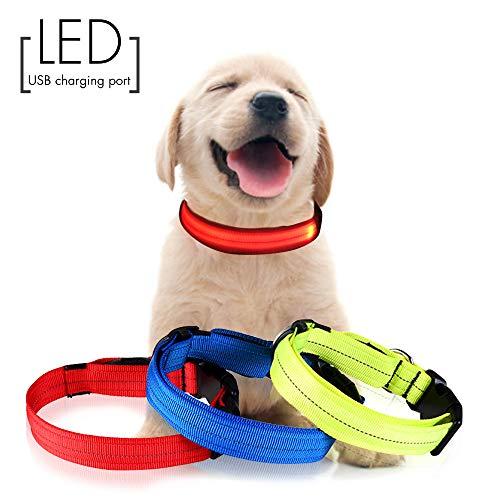 d-LED Hundehalsband mit wiederaufladbarem USB-Licht, 3 Leucht- / Reflektionsmodi-Strings, Verstellbarer D-Ring mit Schnalle im Freien (Rot 12.2''-15.8''Neck S) ()
