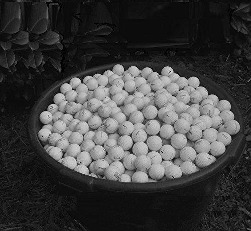 NITE-HAWK ballfinder: findet riesige Mengen an lost golfballs in kurzer Zeit - 3