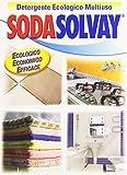 Sodasolvay - Detergente, Ecologico, Multiuso - 1000 g