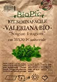 VALERIANA BIO kit completo orto seminafacile / Valerian salad easy growing kit