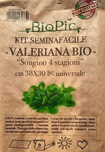 Galleria fotografica VALERIANA BIO kit completo orto seminafacile / Valerian salad easy growing kit