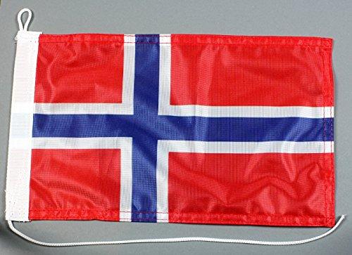 Buddel-Bini Bootsflagge Norwegen 20 x 30 cm in Profiqualität Flagge Motorradflagge