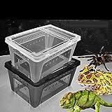 Generic Transparent Wasserreptil Zuchtbox Insektenbox für Reptilien – 25×17.5x11cm - 3