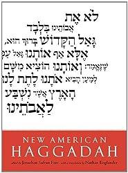 New American Haggadah by Jonathan Safran Foer (2014-03-04)