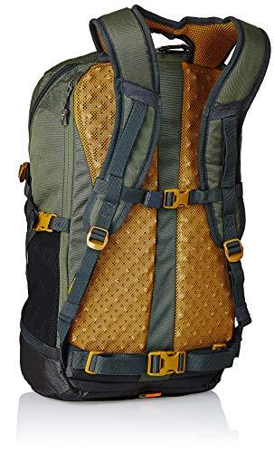 Best decathlon backpack in India 2020 Quechua 30 Ltrs Khaki Rucksack (8383598) Image 2