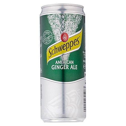 schweppes-american-ginger-ale-einweg-1-x-330-ml