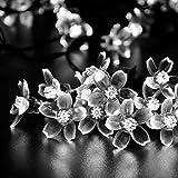 lederTEK Solar Powered Flower Fairy String Lights 21ft 50 LED Waterproof Peach Blossom Christmas Decorative Lamp for Outdoor, Garden, Home, Wedding, Xmas Tree New Year Party (50 LED White)