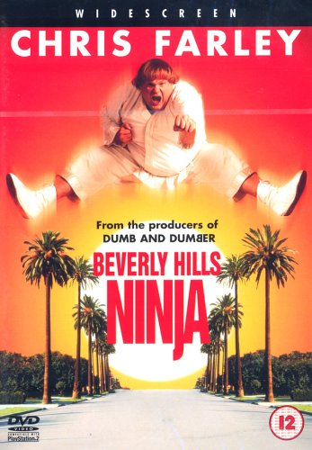 beverly-hills-ninja-master-of-disaster-dvd