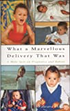 What a Marvelous Delivery That Was: A Male Spin on Pregnancy and Babies: Becoming a Father