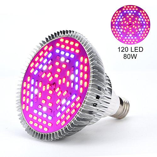 LED-Pflanzenlampe 30W, 50W, 80W, E27, Lampe für das Wachstum von Pflanzen, Gartenbau, Leuchtmittel für Garten 80w (Led Grow Light E27)
