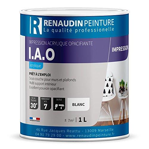 renaudin-peinture-114119-iao-impression-acrylique-mur-plafond-interieur-exterieur-opacifiante-blanc-