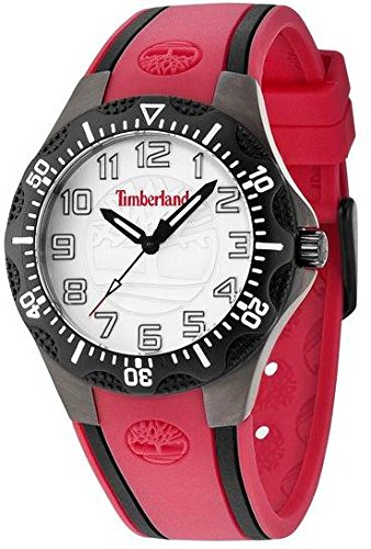 Womans watch TIMBERLAND DIXIVILLE S 14323MSUB-04
