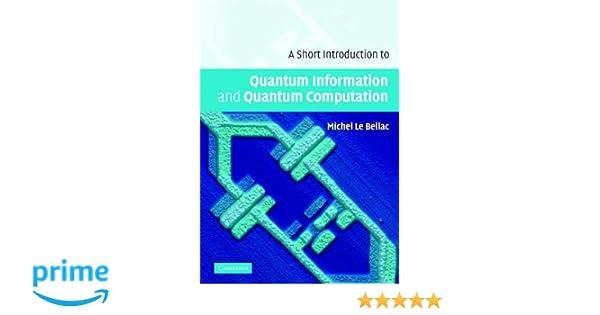A Short Introduction to Quantum Information and Quantum Computation