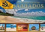 Die kleinen Antillen - Barbados (Wandkalender 2019 DIN A4 quer): Traumhafte Strände, azurblaues Wasser - die Postkartenidylle schlechthin. (Monatskalender, 14 Seiten ) (CALVENDO Orte)