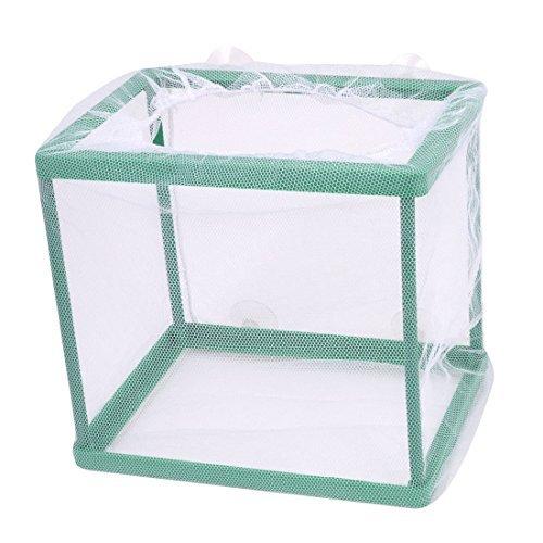 DealMux Fish Tank Kunststoff rechteckigen Rahmen Fry Hatchery weiß Netto Züchter