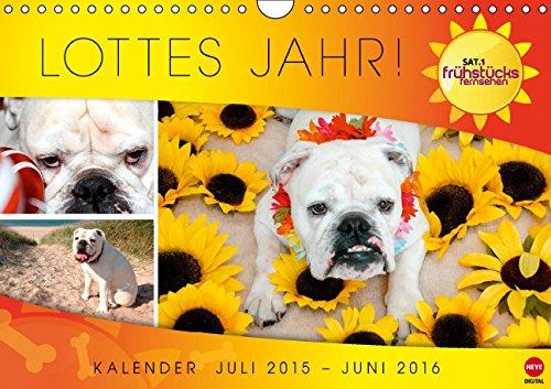 Lottes Jahr (Wandkalender 2016 DIN A4 quer): Ein Jahr mit Lotte aus dem SAT.1 Frühstücksfernsehen (Monatskalender, 14 Seiten) hier kaufen