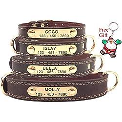 SLZZ Collar de Perro de Piel Personalizado Premium con Placa identificativa grabada, Suave al Tacto, Resistente Piel auténtica/Ajustable, Perros pequeños, medianos y Grandes