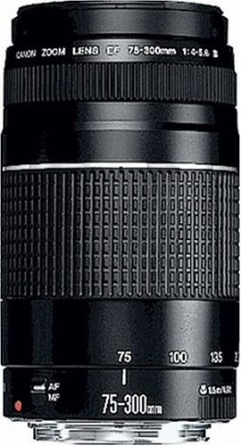 Canon EF 75-300mm/ 4,0-5,6/ III Objektiv (Canon 550d Zubehör)