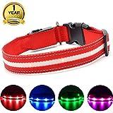MASBRILL Leuchthalsband für Hunde Aufladbar LED Hundehalsband 100% Wasserdicht Blinkende Lichter mit USB (XS, 35X2cm, Rot)