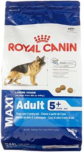 Royal Canin : Croquettes Chien Senior Shn Maxi 5 + : 4 Kg