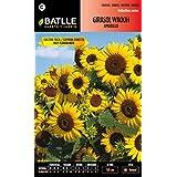 Semillas Batlle 094203BOLS - Girasol Waooh amarillo