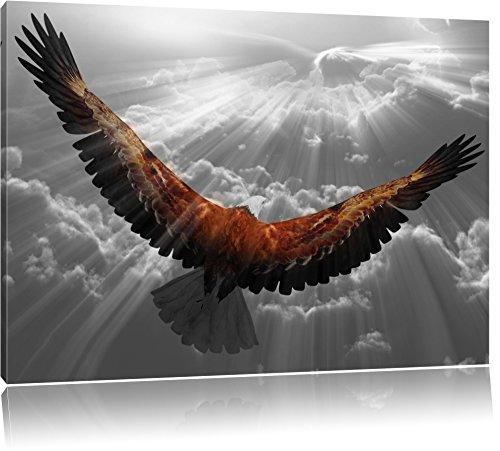 anmutiger Adler über den Wolken schwarz/weiß Format: 120x80 auf Leinwand, XXL riesige Bilder fertig gerahmt mit Keilrahmen, Kunstdruck auf Wandbild mit Rahmen, günstiger als Gemälde oder Ölbild, kein Poster oder Plakat (Adler Bilder)
