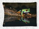 CELYCASY Tapiz colgante de pared, color rana con ojos rojos, tapiz reflectante al agua, para...