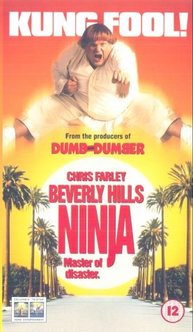 beverly-hills-ninja-master-of-disaster-vhs