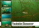 Faszination Süsswasser (Tischkalender 2019 DIN A5 quer): Unterwasserimpressionen aus mitteleuropäischen Seen (Monatskalender, 14 Seiten ) (CALVENDO Tiere)