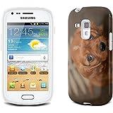 Chiens 10054, Chiot, Clair Etui Housse Coque de Protection en Cuir avec Stand, Fermeture Magnétique et Dessin Coloré pour Samsung Galaxy S3 Mini i8190