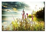Bilderfabrik - Naturbild - Blumen am Wasser 80 x 120 cm Druck auf Leinwand und Holzkeilrahmen bespannt. Beste Qualität, handgefertigt in Deutschland. (80 x 120 cm)