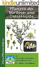 Pflanzen der Nordsee- und Ostseeküste (iFlora Pflanzenführer 5)