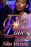 Crazy In Love 2: A Twisted Urban Romance