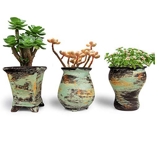 T4U 8.5CM Macetas para Cactus de Ceramica con Plato de Bambú Paquete de 3, Maceteros Pequeños para Suculento Plantas Casa y Jardin Boda Decorativos Interior
