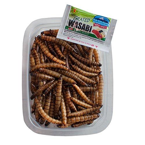 verzehrfertige Zophobas (Schwarzkäferlarven) Wasabi-Paste, 10g