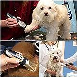 Zetong Tech Profi Keramik Schermaschine mit Zubehör Wiederaufladbare Tierhaarschneider Haustiere Elektrische Haarschneidemaschine für Hunde,Katze Gold - 6