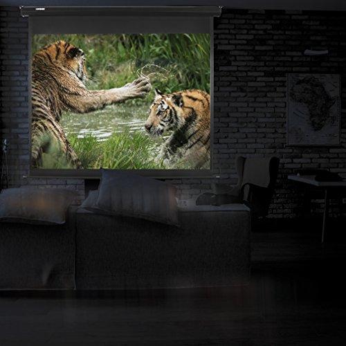 Duronic MPS 60 / 43 Projektor Leinwand / Rollo – Leinwand 100 Zoll / Nutzfläche 221×125 cm / Decke oder Wand montierbar - 3