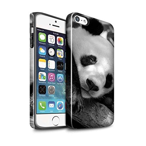 STUFF4 Glanz Harten Stoßfest Hülle / Case für Apple iPhone 7 / Faultier Muster / Zoo-Tiere Kollektion Pandabär