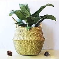 XGZ - Cesta plegable hecha de junco marino y tejida a mano, ideal para lavandería y almacenar juguetes, ropa, fruta o plantas, Large