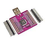Banbie8409 CJMCU-2232 FT2232 HL da USB a UART FIFO SPI I2C JTAG Modulo RS232 FT2232HL N9P6