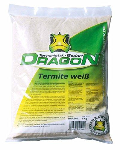 dragon-termite-weiss-5-kg-bodengrund-lehmhaltig