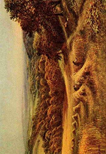 a4-photo-sherrin-daniel-1868-1940-in-unfamiliar-england-1910-a-sussex-harvest-field-print-poster