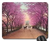 Amish Buggies Traveling Pink Lined Dirt Road Mouse Pad, Mousepad (Flowers Mouse Pad)