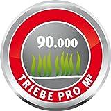 WOLF-Garten Schattenrasen SCR 500; 3820060 -