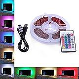 AVAWAY USB LED Streifen RGB 5050 SMD LED Strip Lichtband TV Hintergrund Beleuchtung Stimmungslicht LED Bias-Beleuchtung mit 24 Key Fernbedinungen und USB Kabel - Wasserdicht (RGB; 3M - Neu)