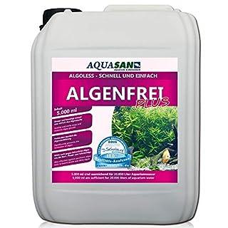 AQUASAN ALGOLESS Algenfrei Plus (GRATIS Lieferung in DE - Aquarium Algenvernichter, Algenentferner - Gegen nahezu alle Algen - Bartalgen, Pinselalgen, Schmieralgen), Inhalt:5 Liter